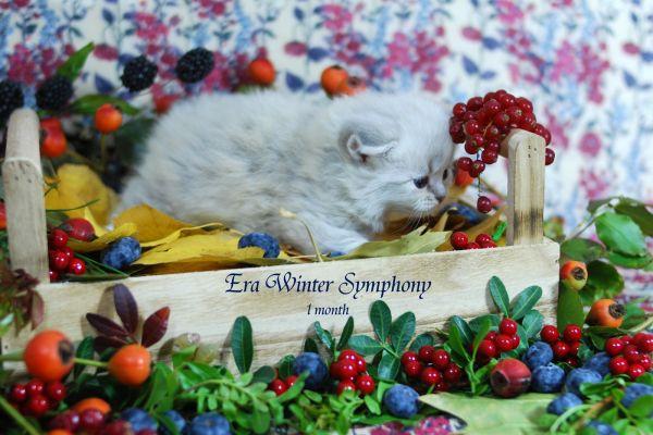 era-winter-symphony-1-month-045FD814D4-AF51-FE08-DEED-75635B41605D.jpg