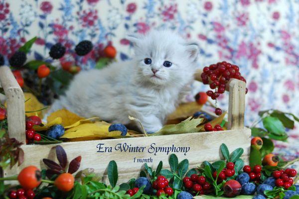 era-winter-symphony-1-month-06DE3951EE-BAE5-5445-07D6-FCD4492FE338.jpg