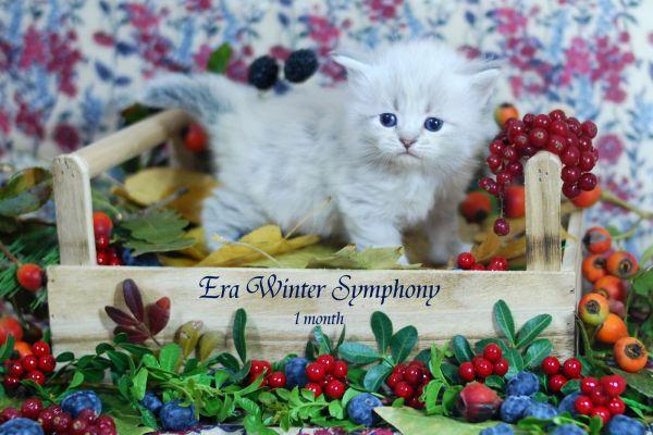 era-winter-symphony-1-month-0978D82A32-2CA8-86B0-A0D2-7758F2A3A057.jpg