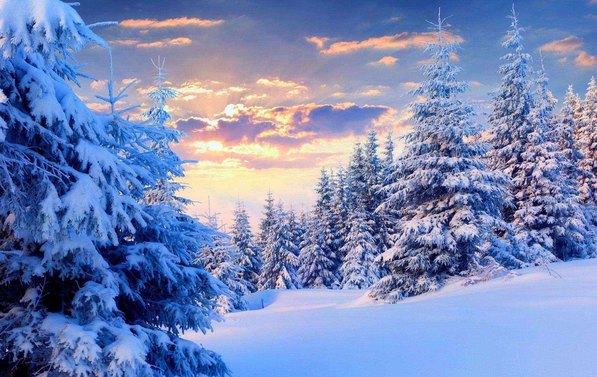 winter-symphony-neva-masquerade-02